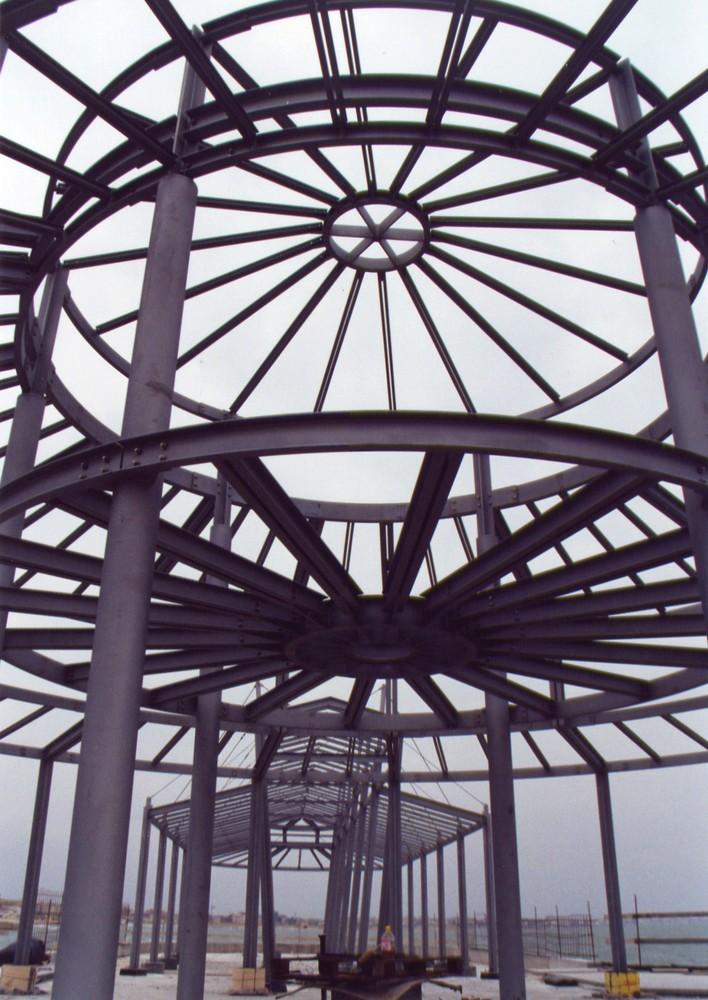 http://progecostrutture.com/wp-content/uploads/2016/07/progettazione_struttura_metallica_commerciale_in_acciaio_rimini_120571.jpg